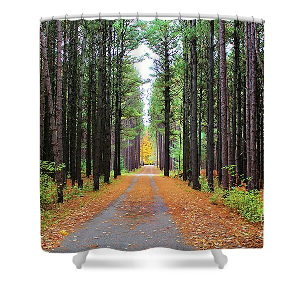 Fall Pines Road Shower Curtain
