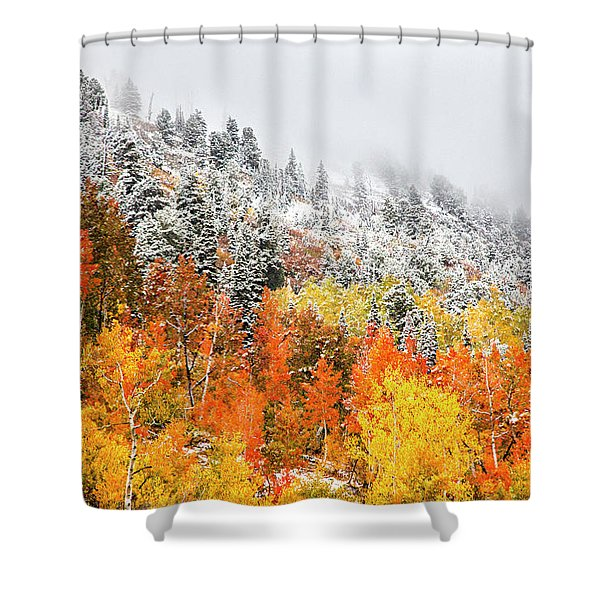 Shower Curtain featuring the photograph Fall To Winter Canvas Print, Photographic Print, Art Print, Framed Print, Greeting Card, Iphone Case by David Millenheft