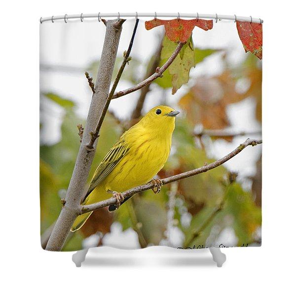 Fall Warbler Shower Curtain