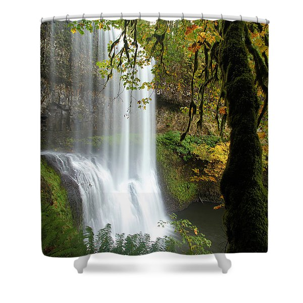 Falls Though The Trees Shower Curtain