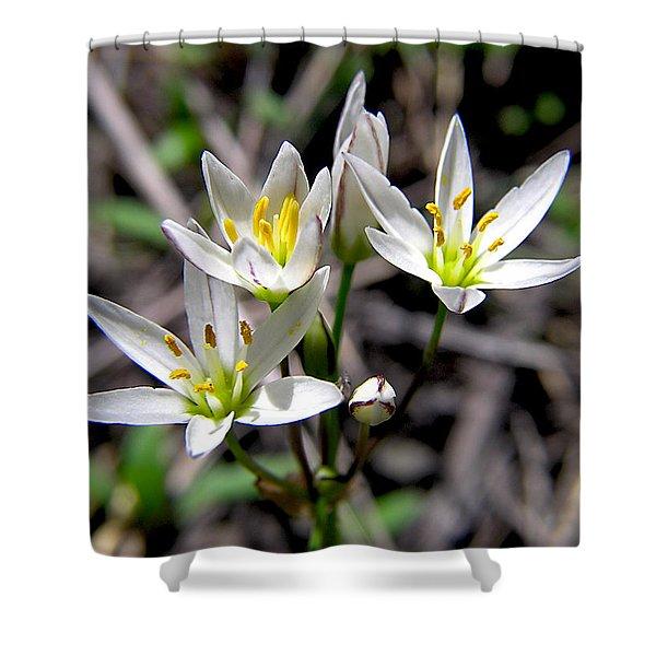 False Garlic Wild Flower Shower Curtain