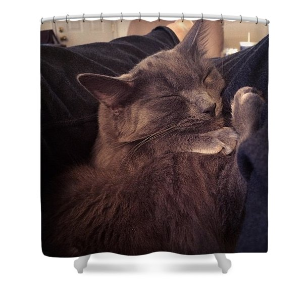 Family Cuddles Shower Curtain