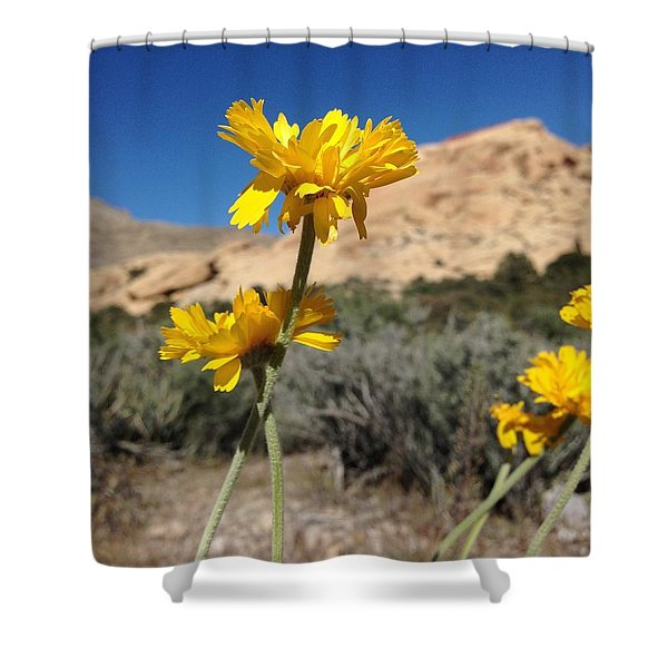 Family Day Shower Curtain
