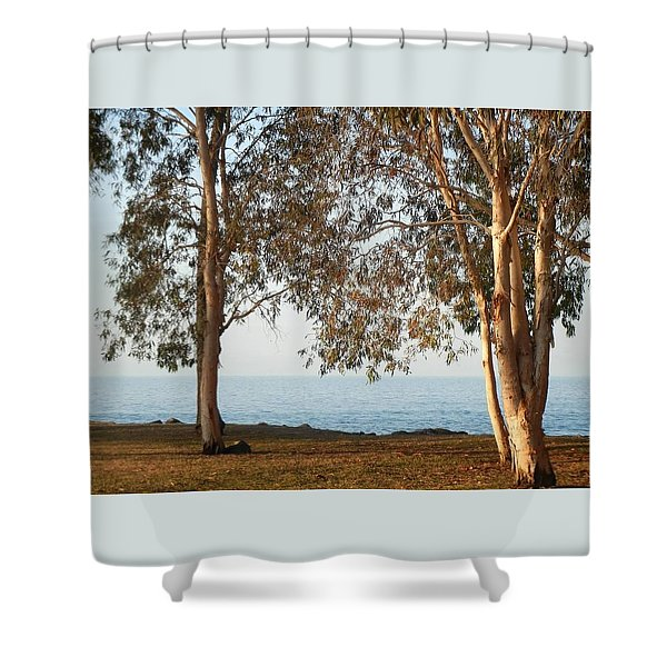 Family Roots Shower Curtain