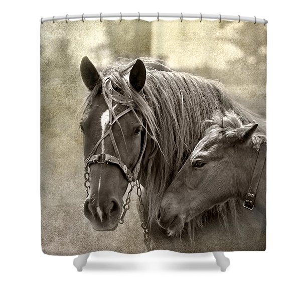 Family Ties Shower Curtain