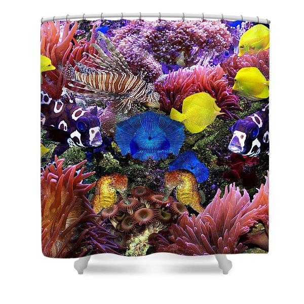 Fantasy Aquarium Shower Curtain