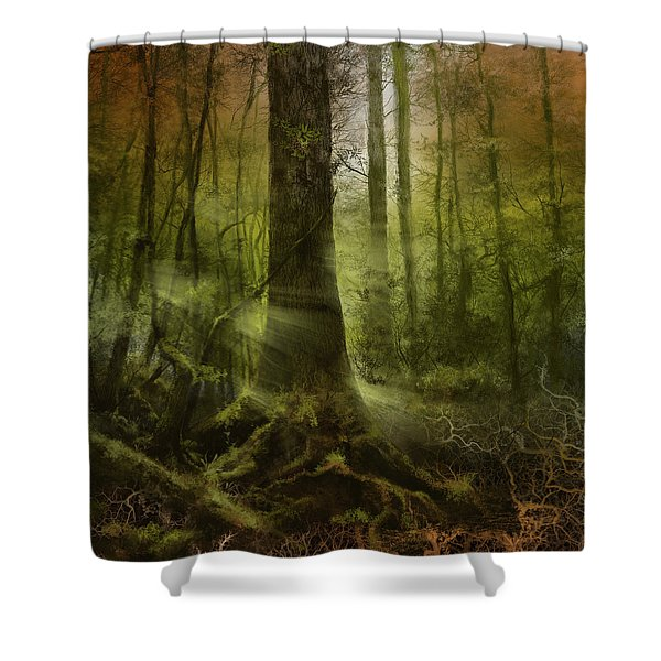 Fantasy Forest 2 3 Shower Curtain