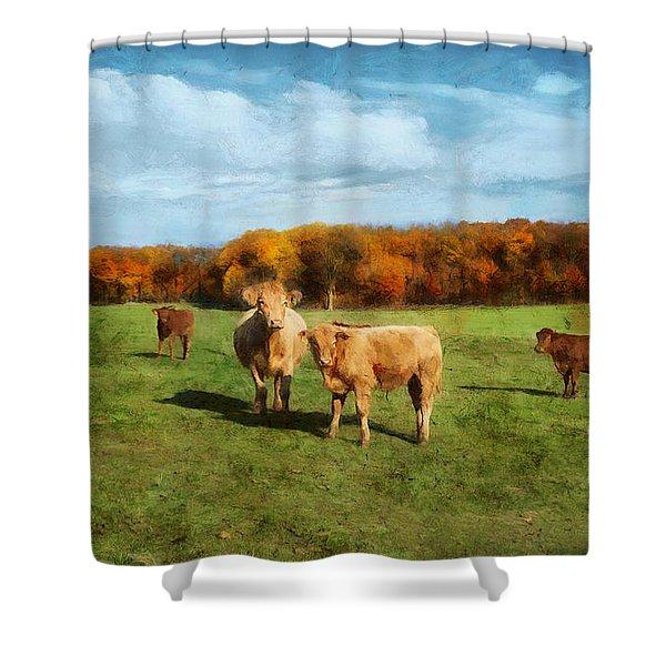 Farm Field And Brown Cows Shower Curtain