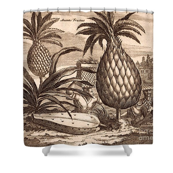 Farming Large Pineapples Shower Curtain