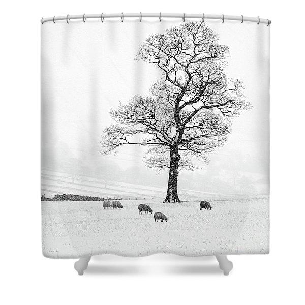 Farndale Winter Shower Curtain