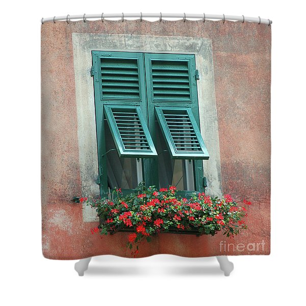 Faux  Painting Window  Shower Curtain