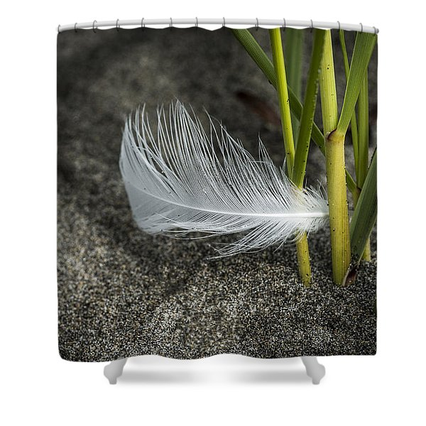 Feather And Beach Grass Shower Curtain