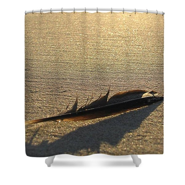 Feather In The Sand Shower Curtain