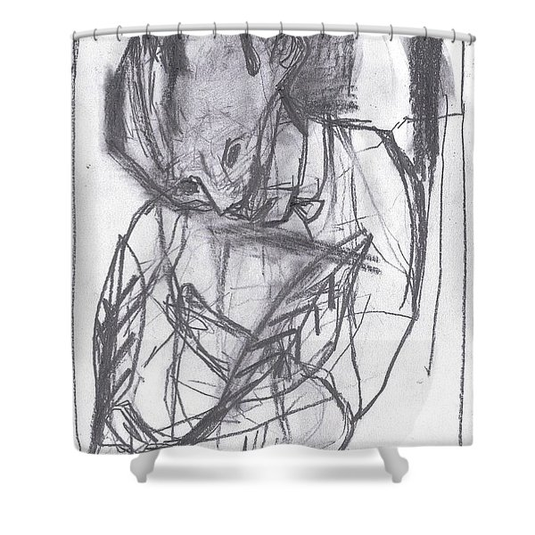 Feather Writer Shower Curtain