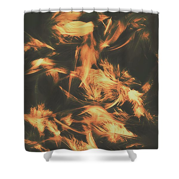 Feathers And Darkness Shower Curtain