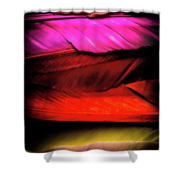 Feathers Of Rainbow Color Shower Curtain