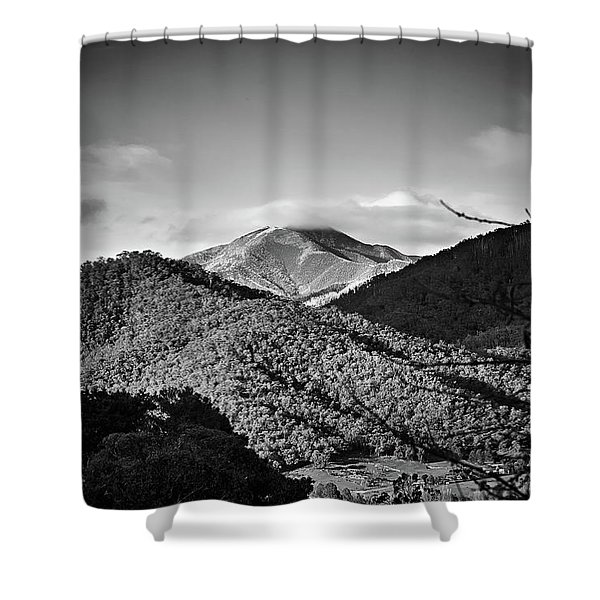 Feathertop Shower Curtain