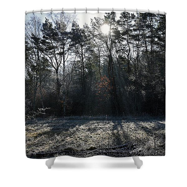 February Morning Shower Curtain