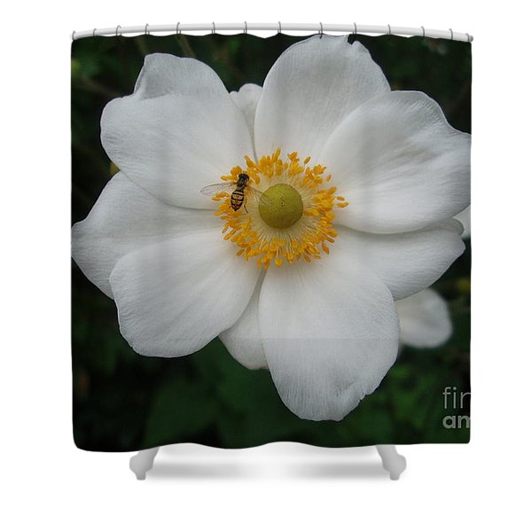Feeling At Home Shower Curtain
