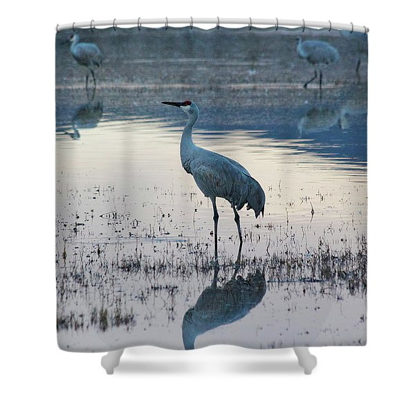 Shower Curtain featuring the pyrography Feeling Blue by Michael Lucarelli