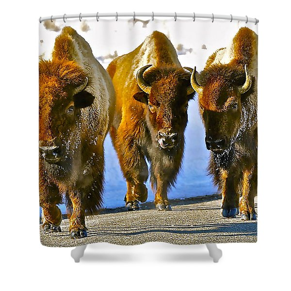 Feet Don't Fail Me Now #2 Shower Curtain