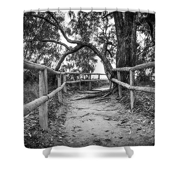 Fenced Pathway. Shower Curtain