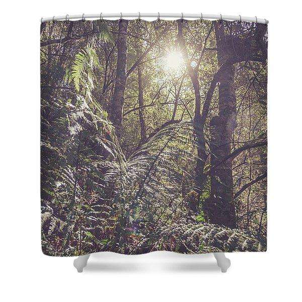 Ferns And Sunshine Shower Curtain