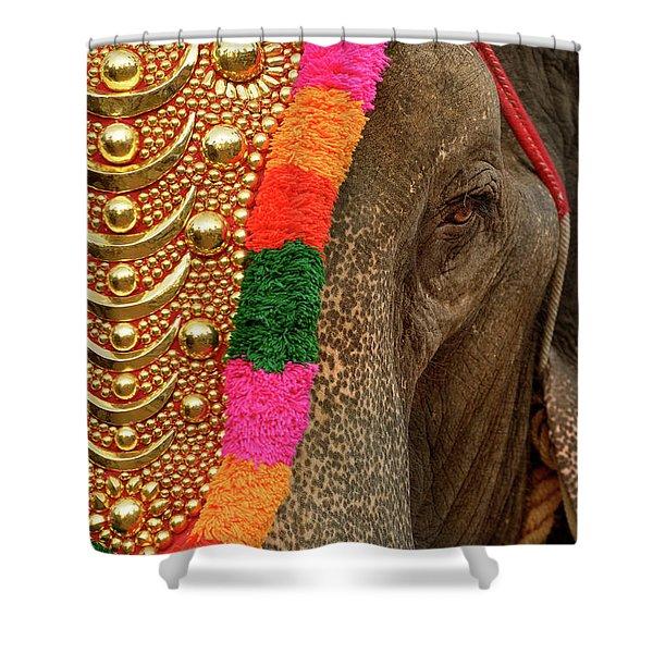 Festival Elephant Shower Curtain