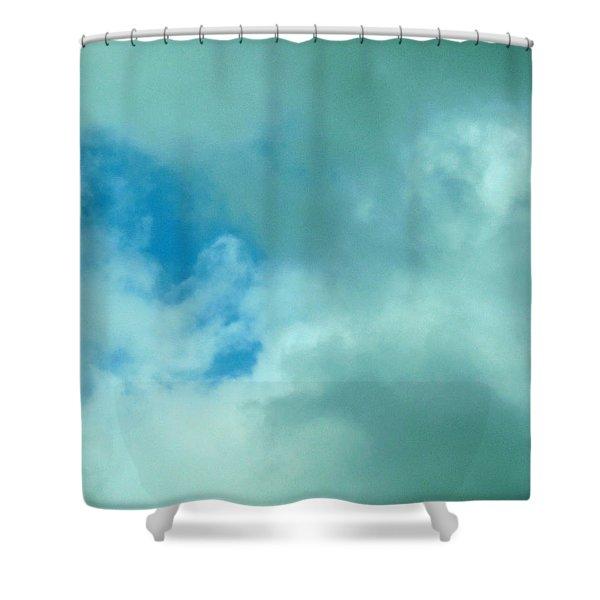 Fetus Shower Curtain