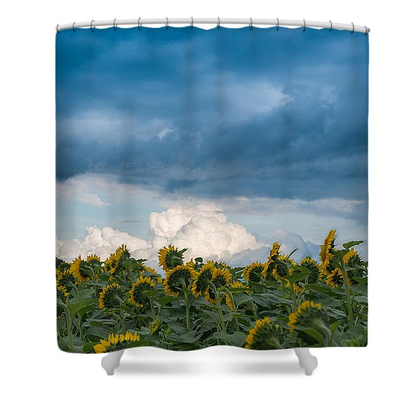Field And Sky Shower Curtain
