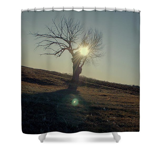 Field And Tree Shower Curtain