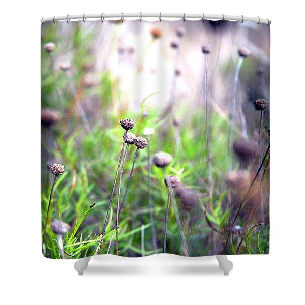Field Flowers Shower Curtain