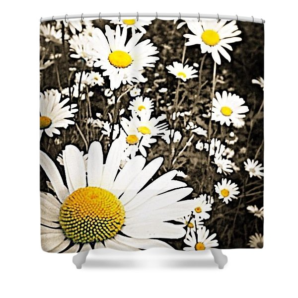 Field Full Of Dasies Shower Curtain