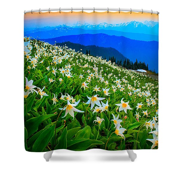 Field Of Avalanche Lilies Shower Curtain