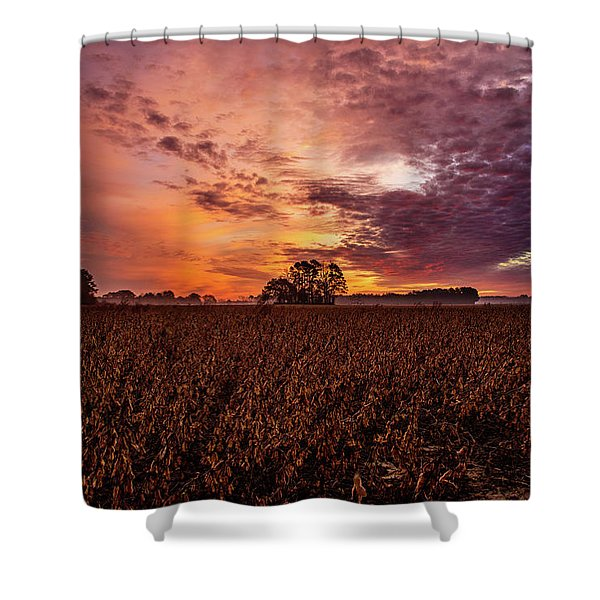 Field Of Beans Shower Curtain