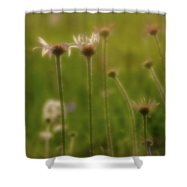 Field Of Flowers 2 Shower Curtain