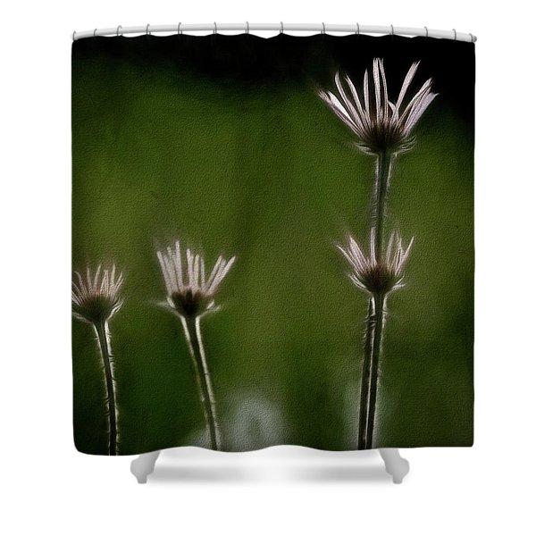Field Of Flowers 4 Shower Curtain