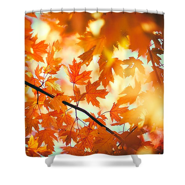 Field Of Orange Shower Curtain