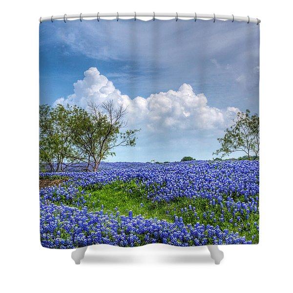 Field Of Texas Bluebonnets Shower Curtain