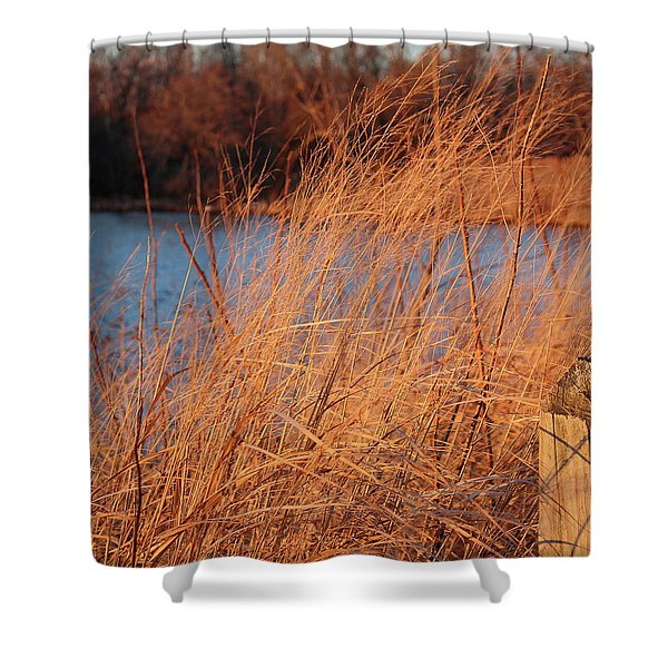 Amber Brush On The River Shower Curtain