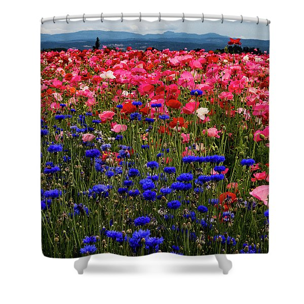 Fields Of Flowers Shower Curtain
