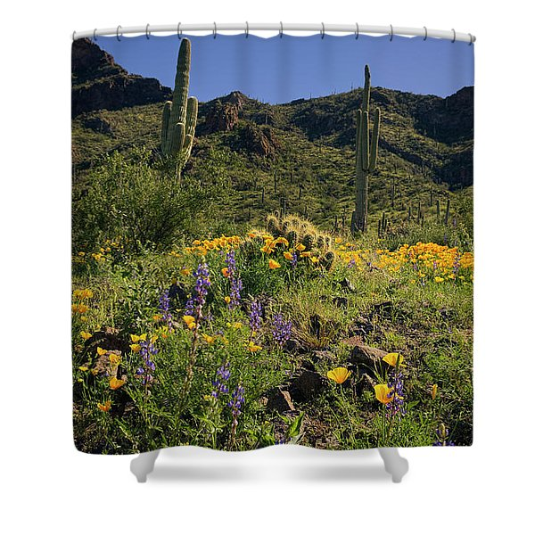 Fields Of Glory Shower Curtain