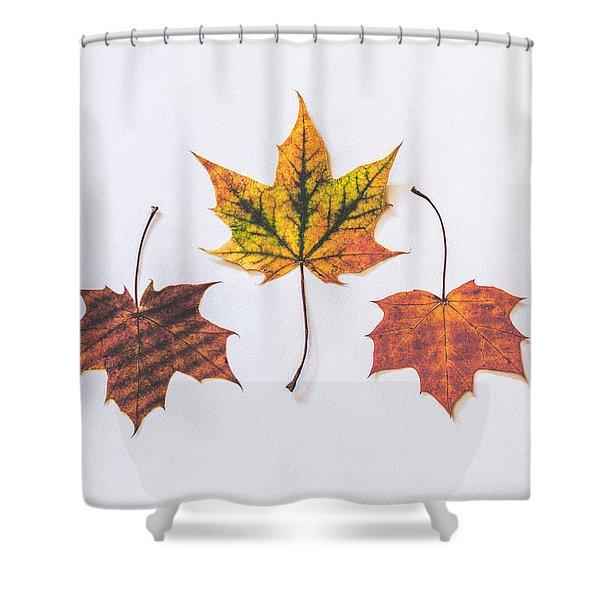 Fiery Beauty Shower Curtain