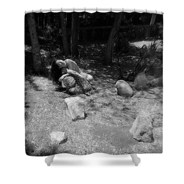 Shower Curtain featuring the photograph Figurative Holga Tryptich 4 by Catherine Sobredo