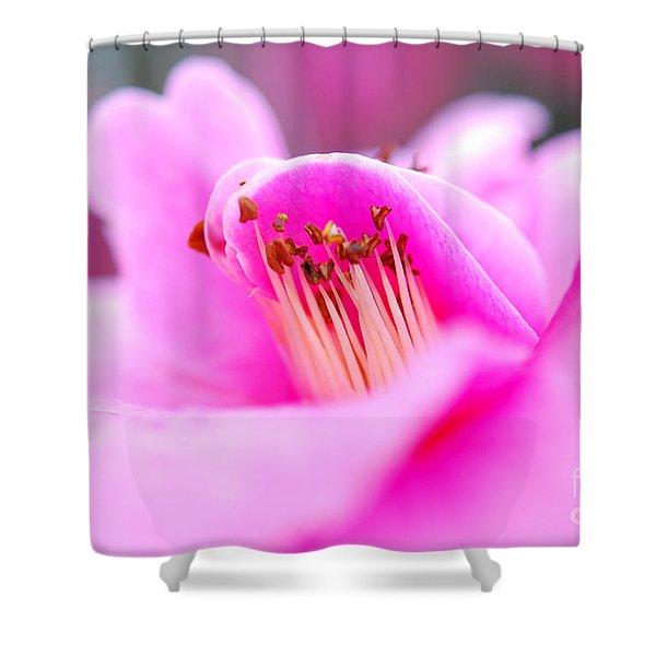 Fine Art- Pink Camellia Shower Curtain