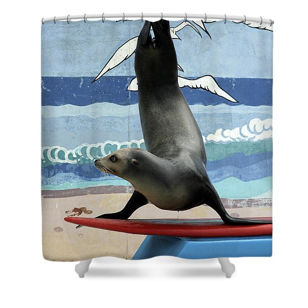 Fins Up Shower Curtain