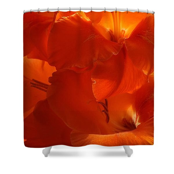 Fire Whispers Shower Curtain