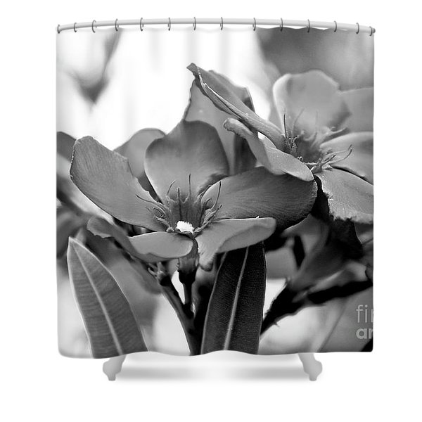 Firewalker Sw Shower Curtain