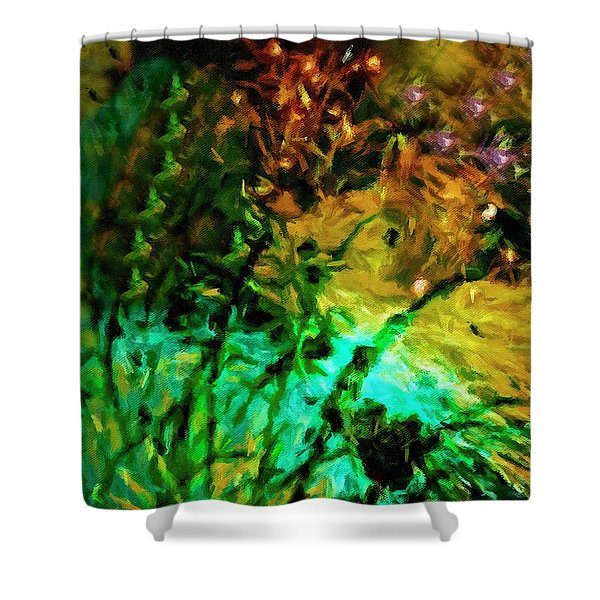Fireworks 14 Shower Curtain