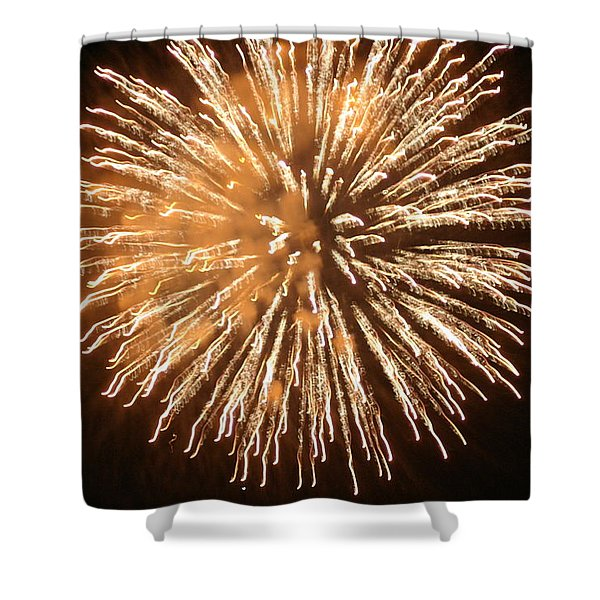 Fireworks In The Park 5 Shower Curtain